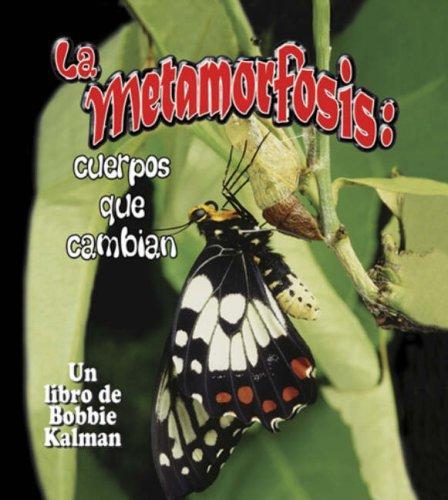 Download La Metamorfosis/ Metamorphosis