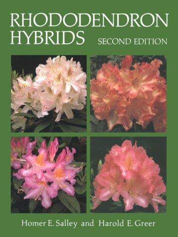 Rhododendron hybrids
