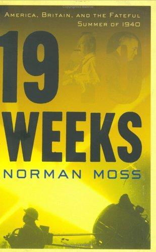 Download Nineteen weeks
