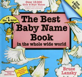 Cover of: The best baby name book in the whole wide world | Bruce Lansky