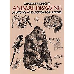 Animal Drawing Anatomy and Action for Artists by Charles R. Knight