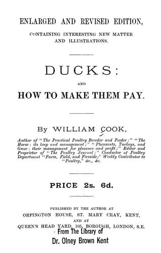 Ducks by William Cook