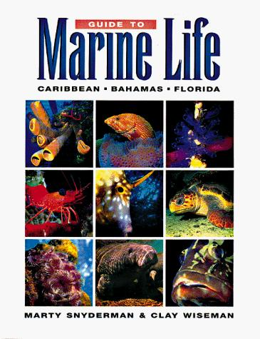 Guide to marine life by Marty Snyderman