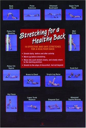 Stretching for a Healthy Back Poster (Flexibility Poster) by Human Kinetics